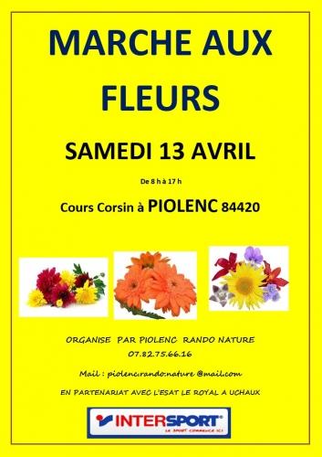 Marché aux fleurs Piolenc.jpg