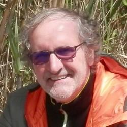 Daniel Dordolo.jpg